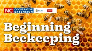 Cover photo for Beginning Beekeeping Class
